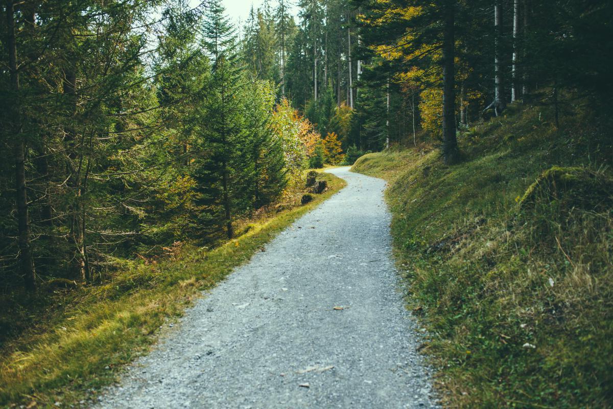 hiking trekking trail