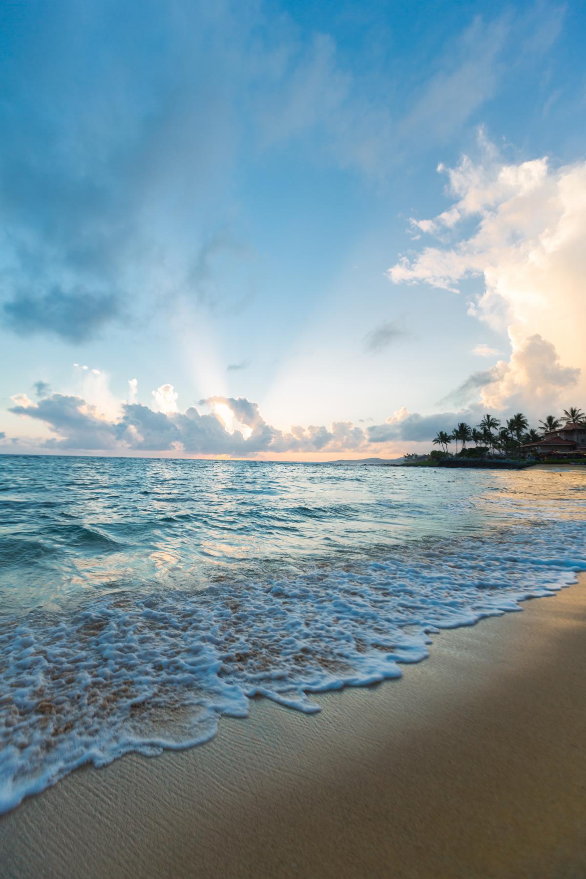 Beach Sea Ocean #245856