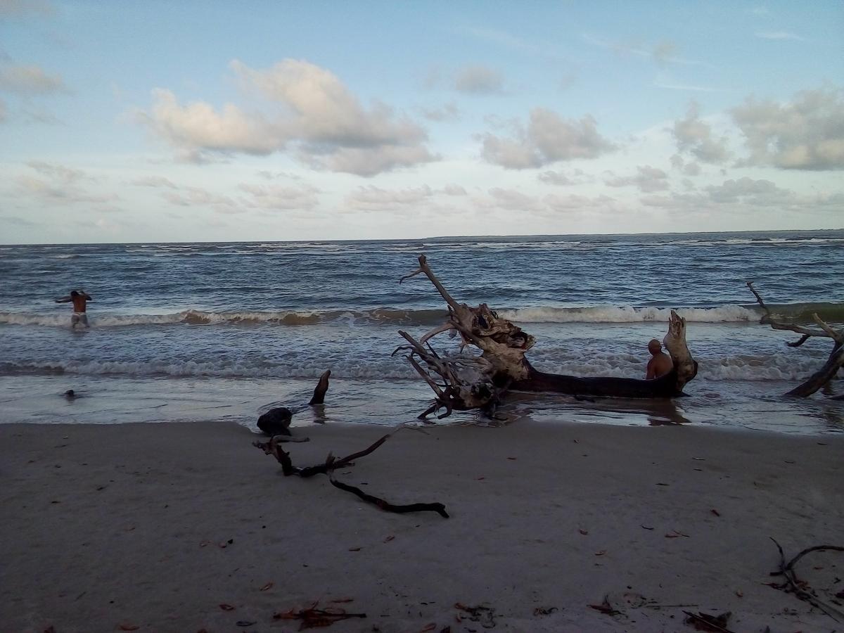 Sea Beach Ocean #245994