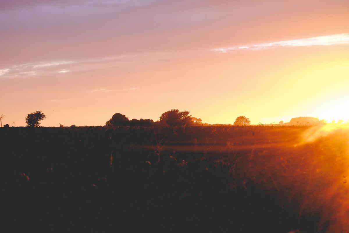 Sunset dusk sky #24909