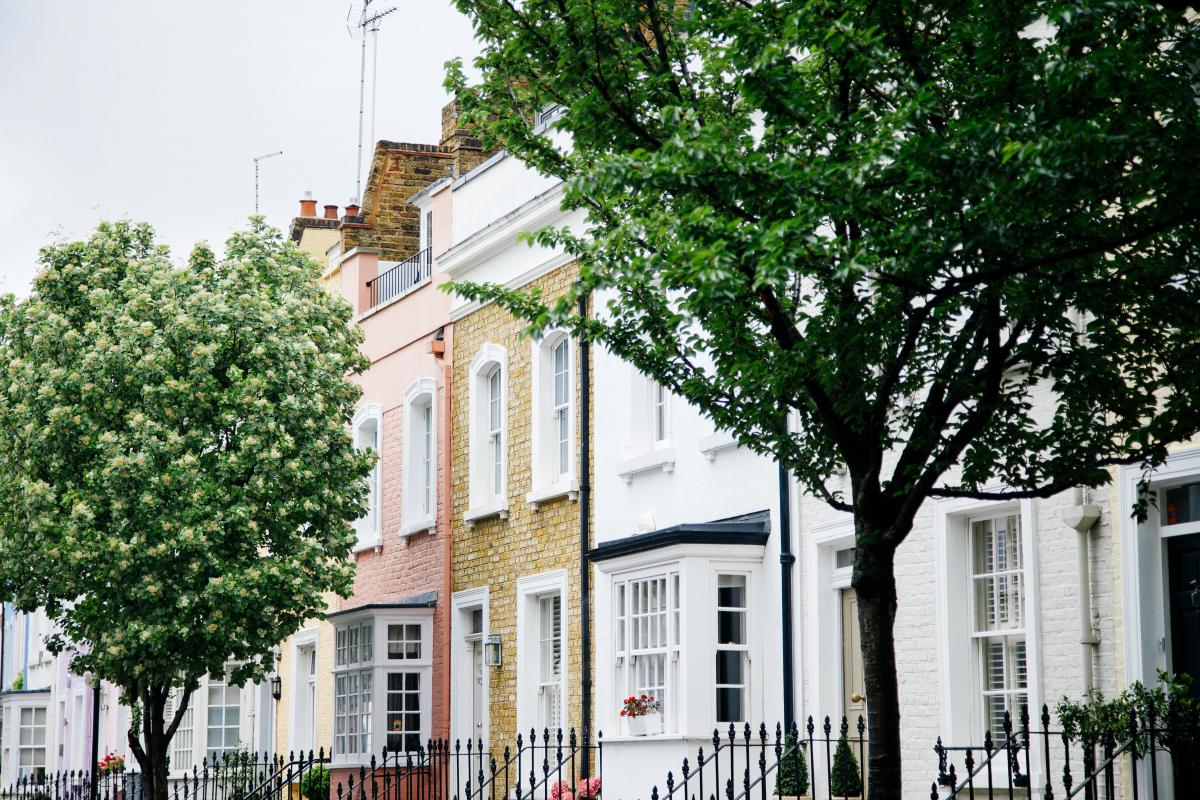 trees houses neighbourhood