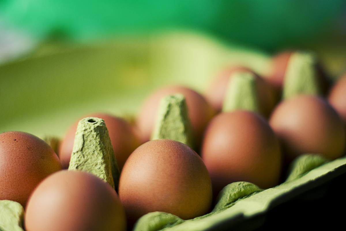 Fruit Eggs Food