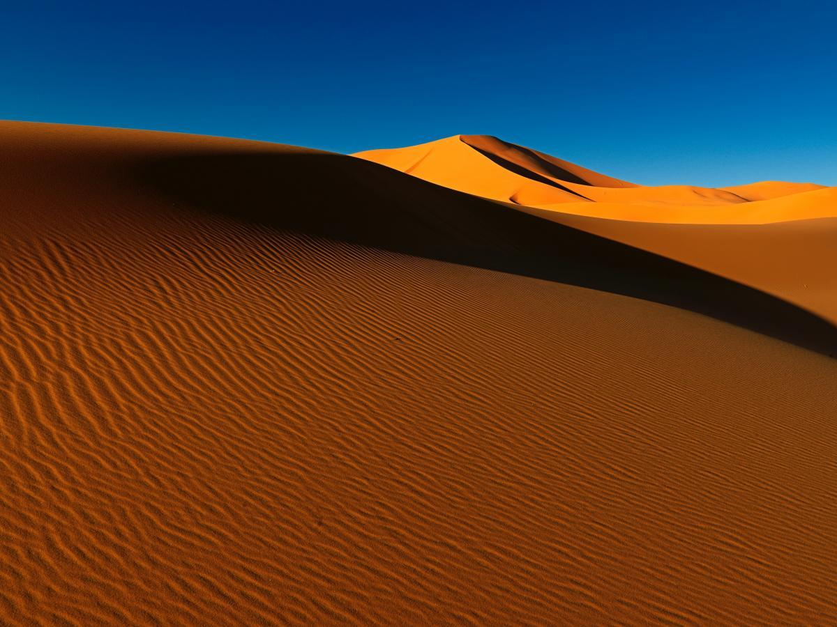 Dune Sand Desert