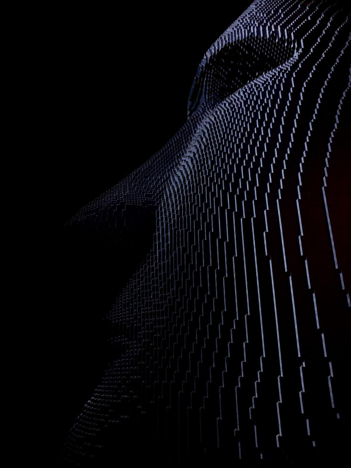 Spider web Cobweb Web