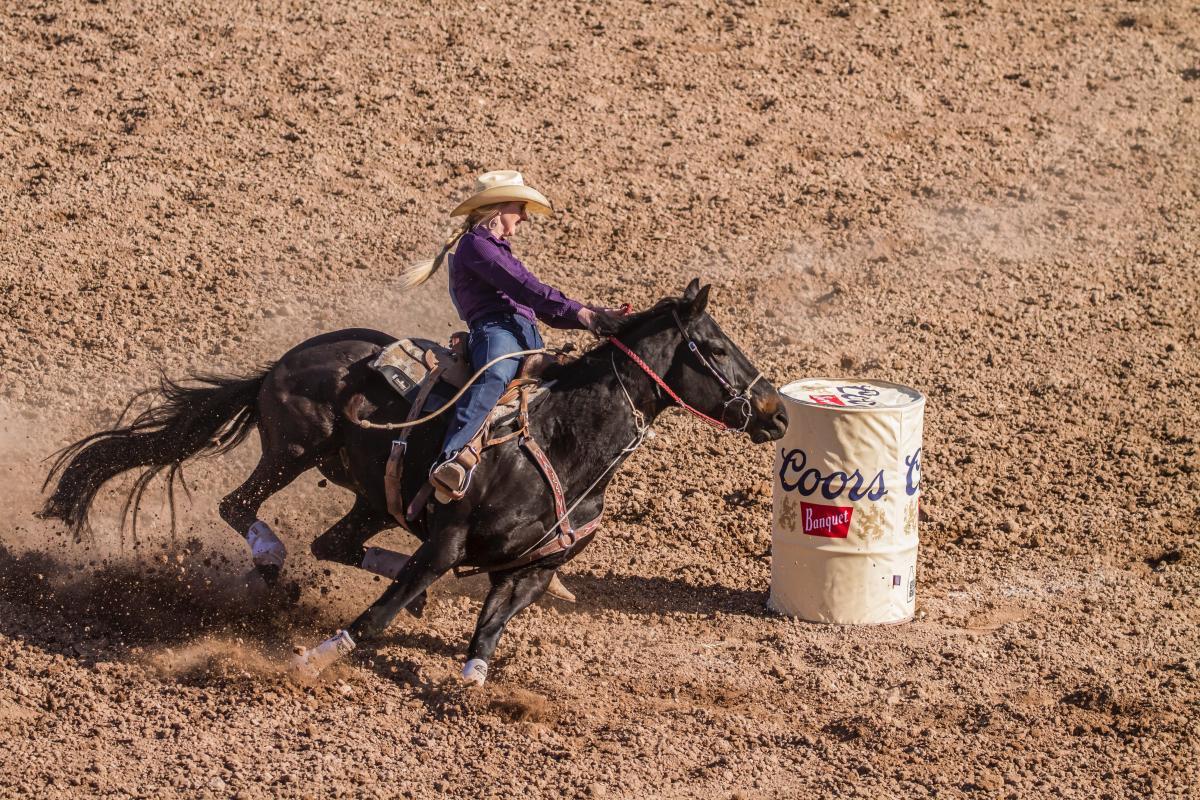 Horse Cowboy Vaulting horse