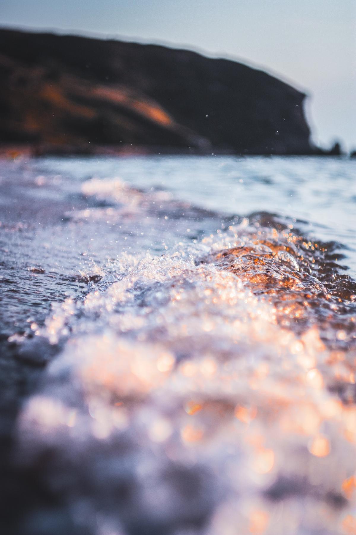 Water Ocean Starfish