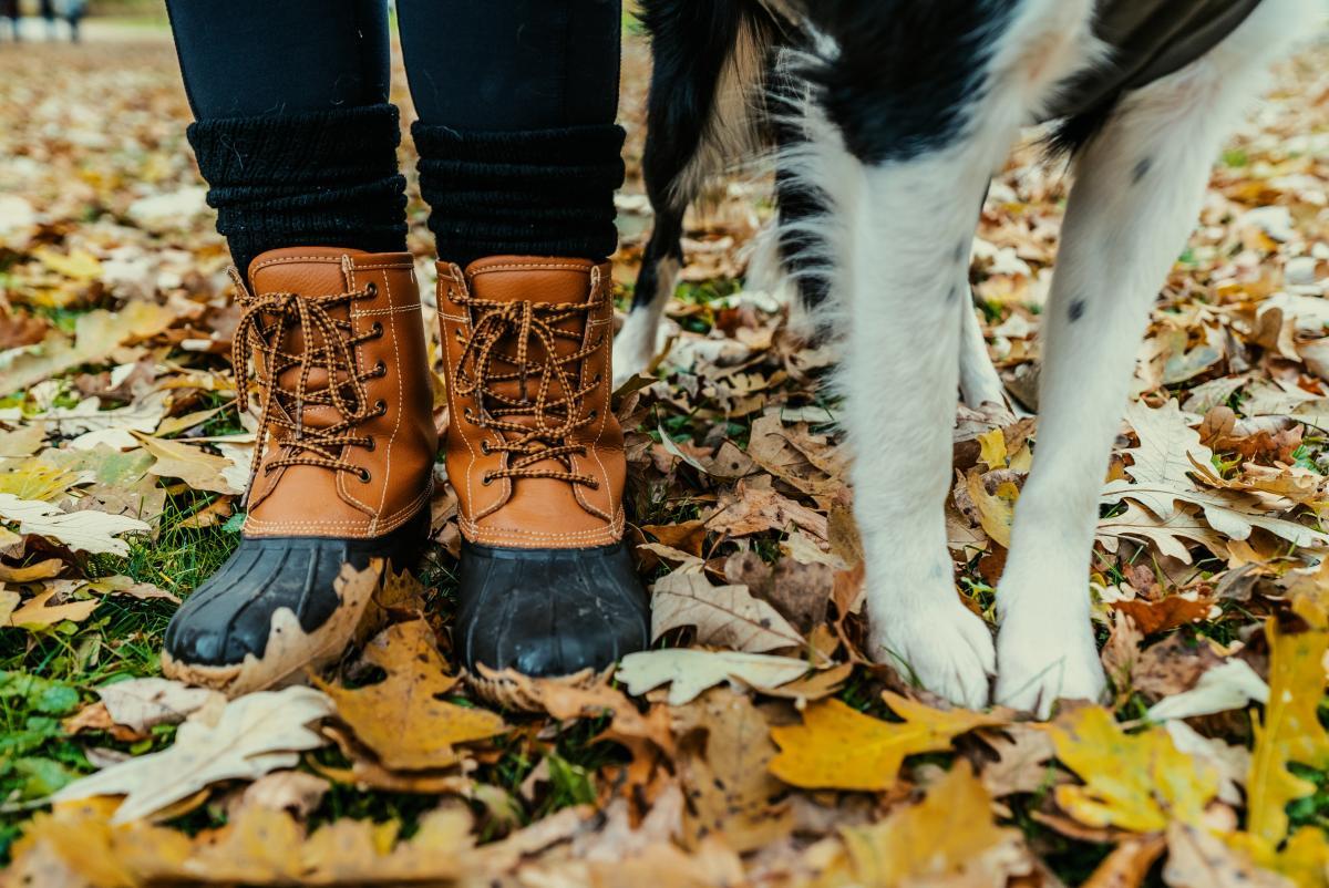 Footwear Boot Cowboy boot