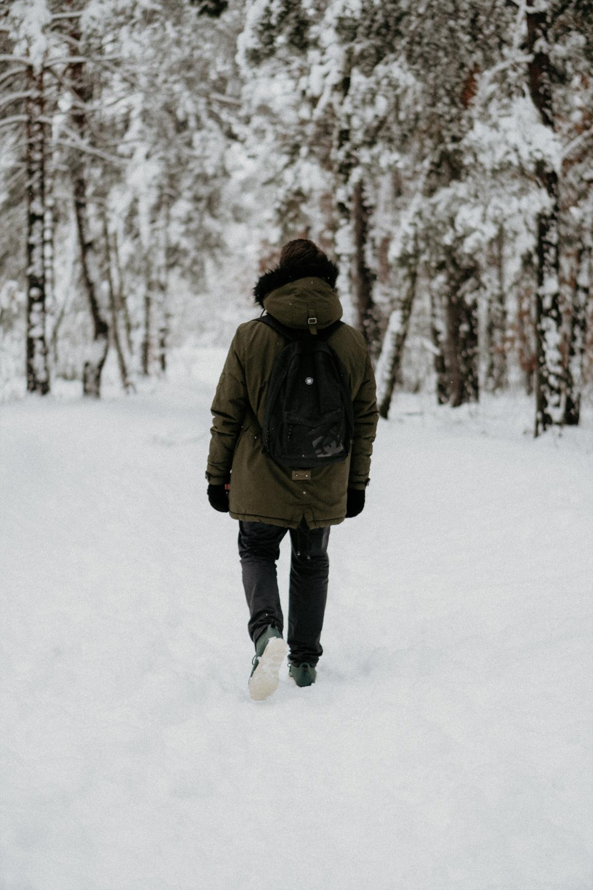 Snow Snowshoe Device #297799