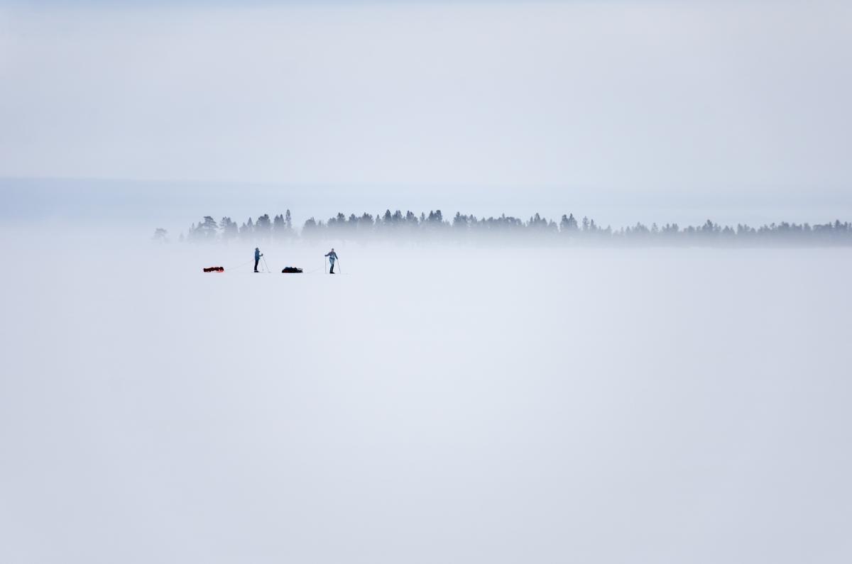 Ice Frame Backdrop