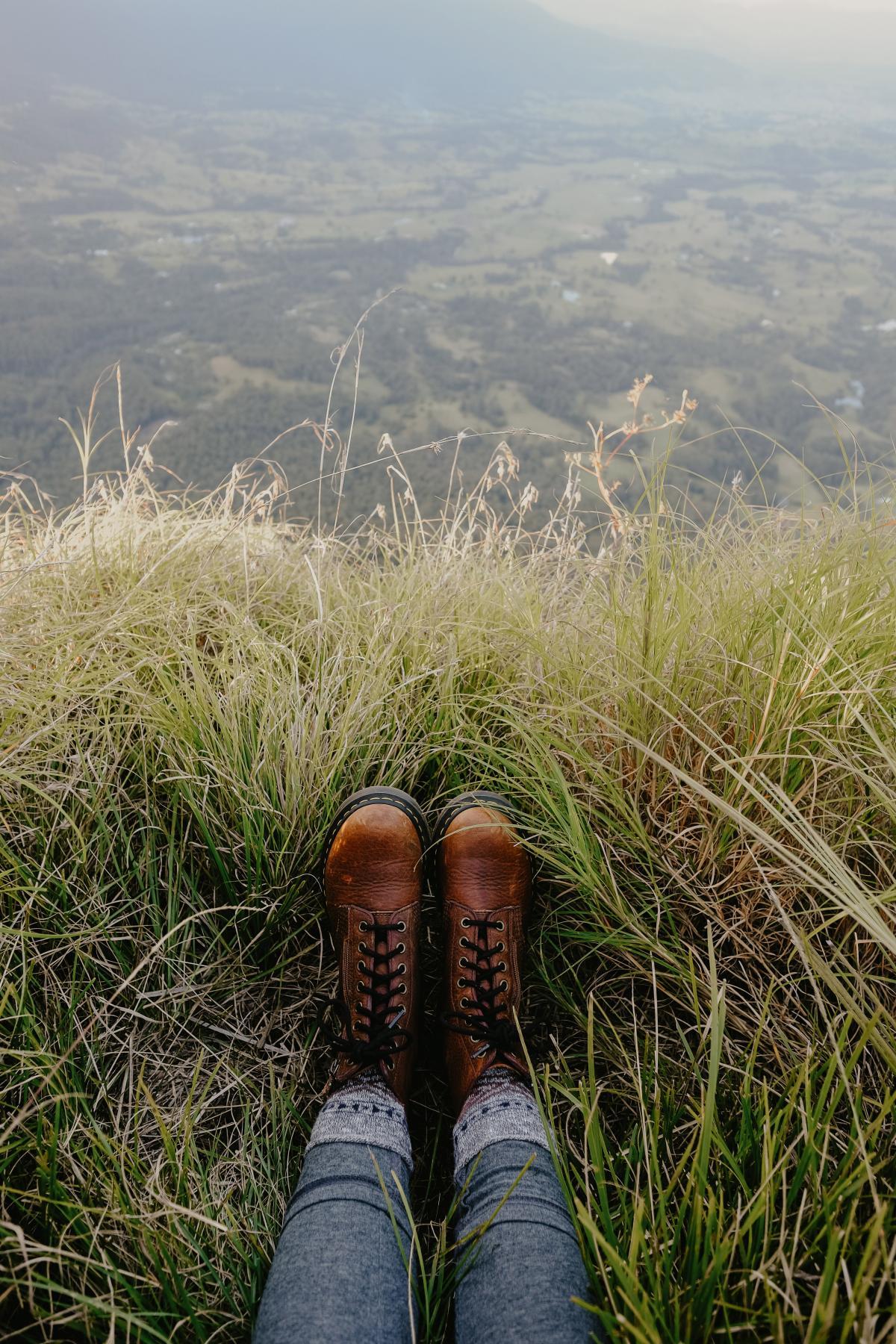 Grass Field Summer