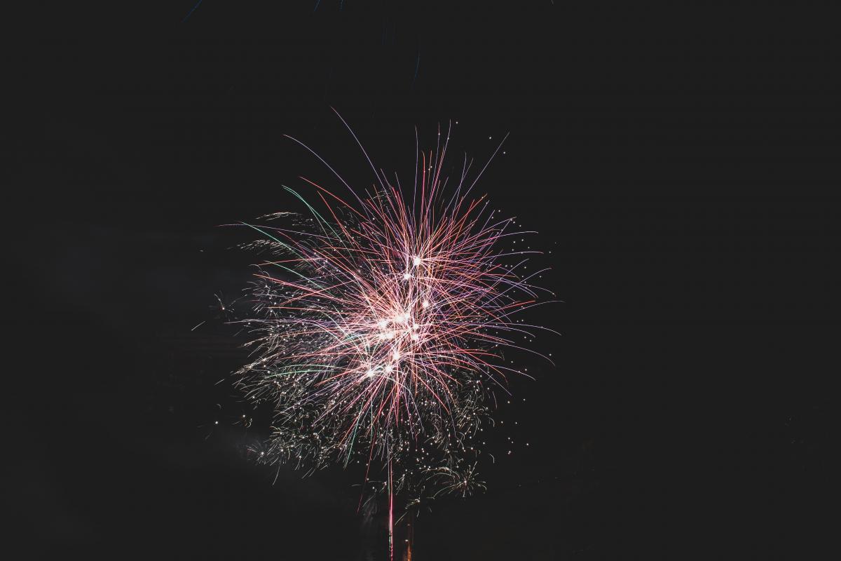 Firework Fireworks Night #316459