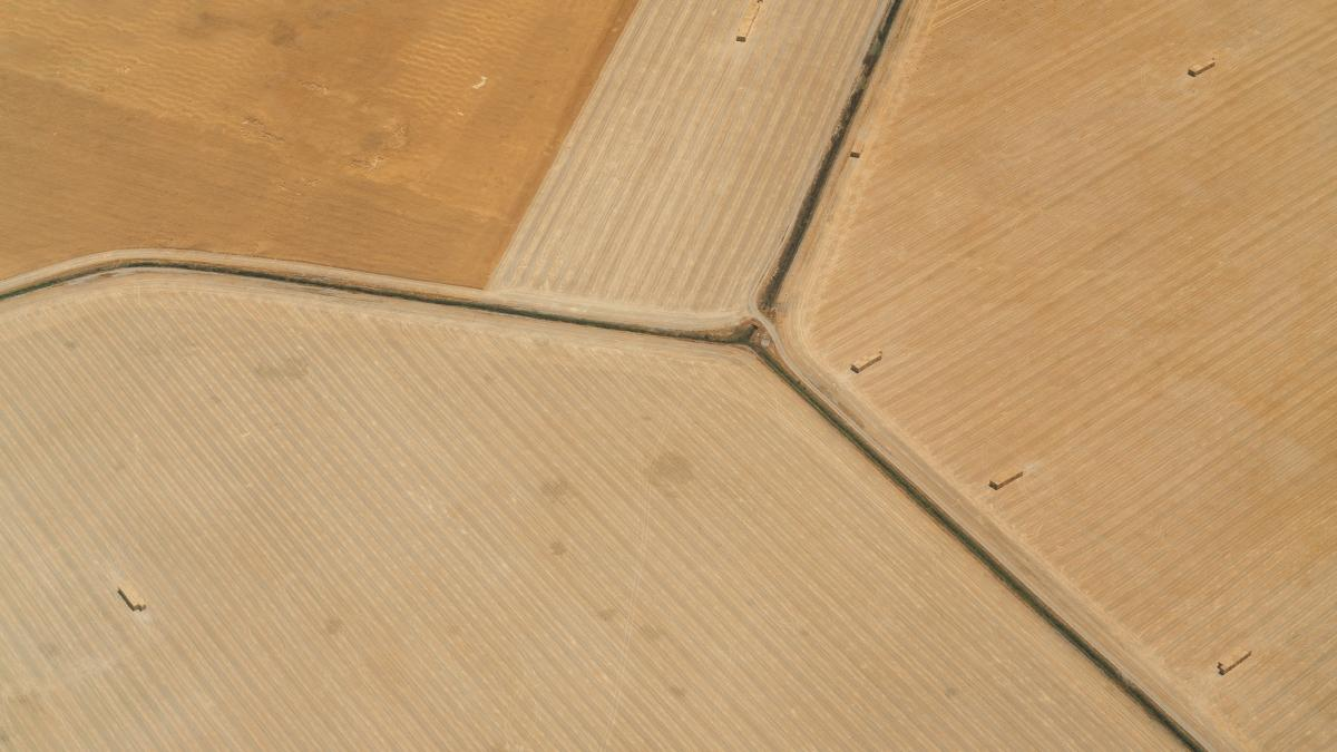 Parquet Wood Board