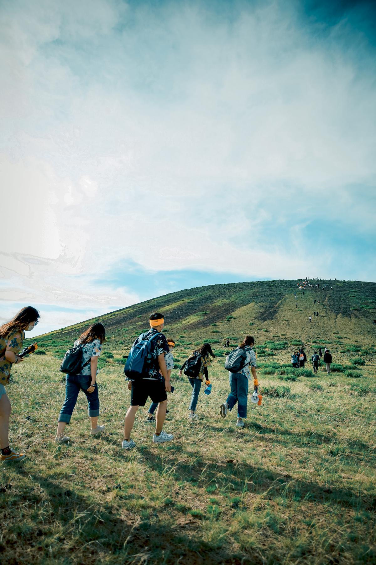 People Walking on Green Grass Field