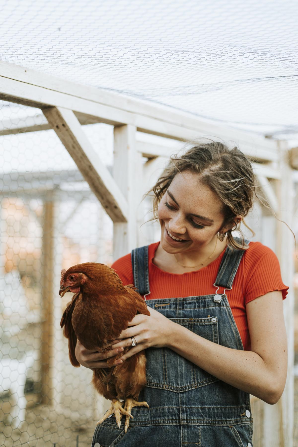 Woman Carrying Hen #339622