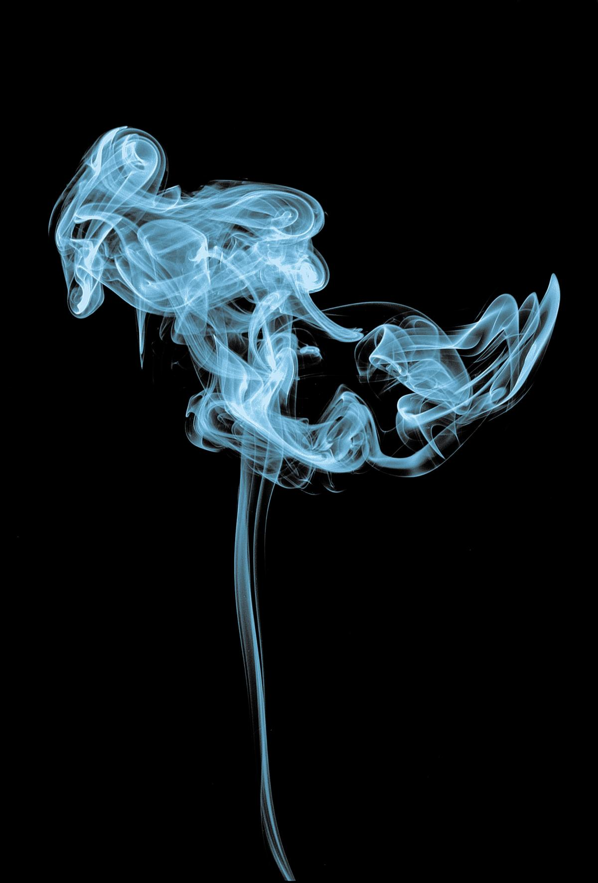 Smoke Anatomy Medical