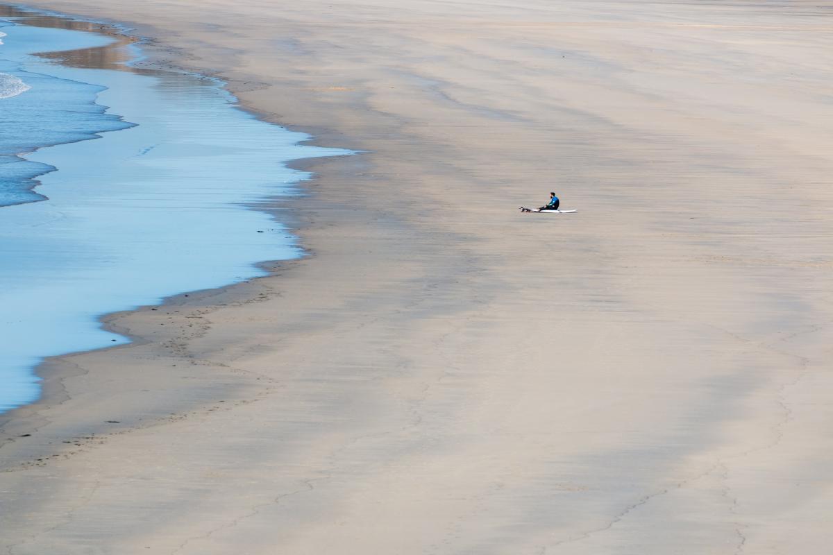 Water snake Ocean Water #359028