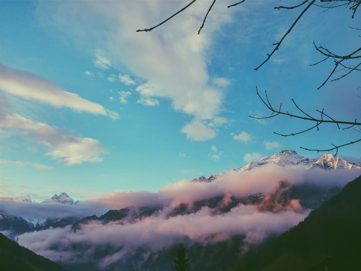 Sky Atmosphere Tree #381478