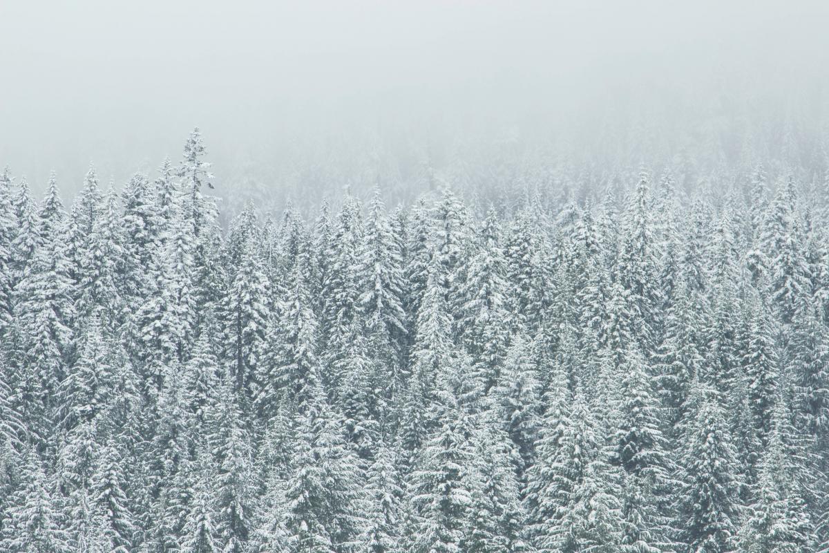 Ice Crystal Snow
