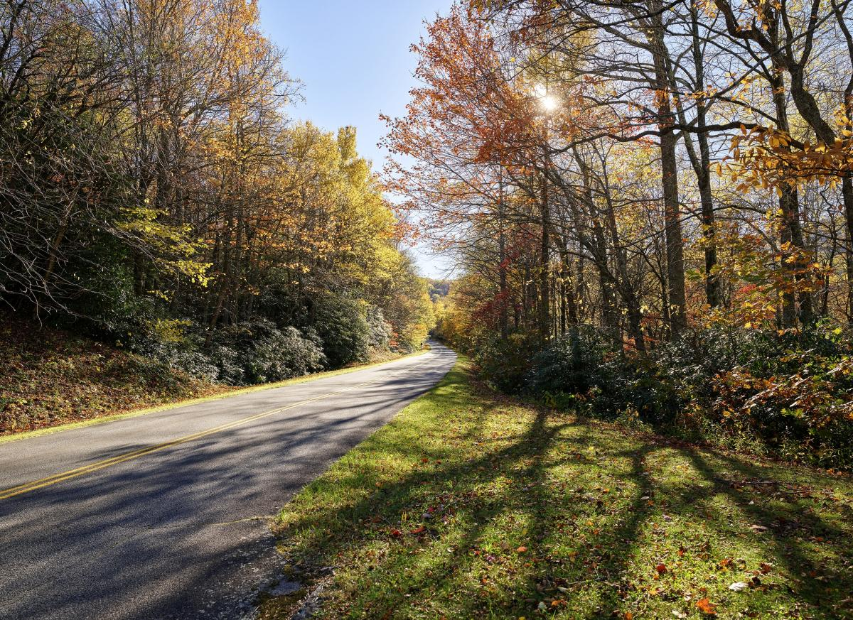 Fall scene on a stretch of roadway along the southern reaches of the Blue Ridge Parkway, near Blowing Rock, North Carolina. Original image from Carol M. Highsmith's America, Library of Congress collection.  #393786