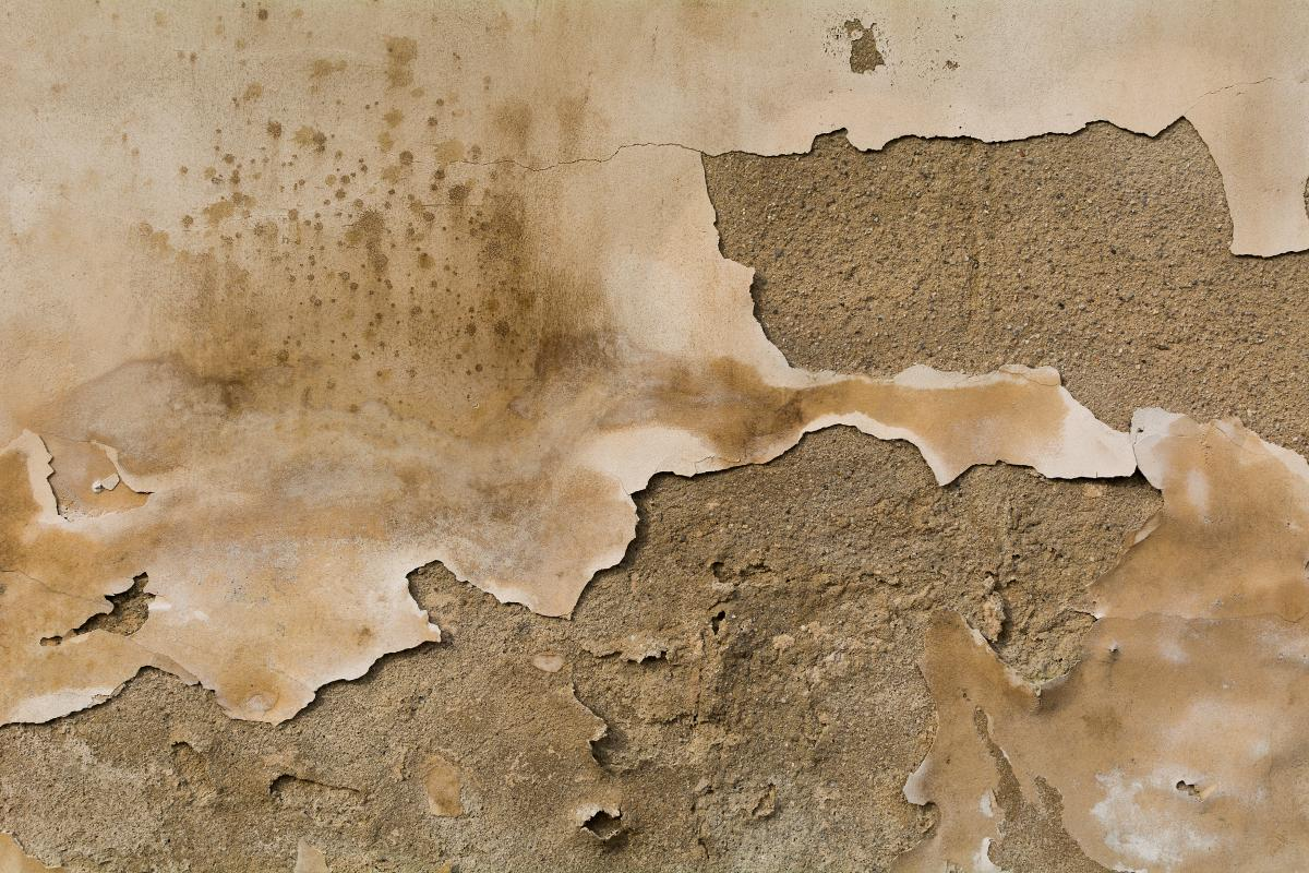 Old wall texture - free stock photo