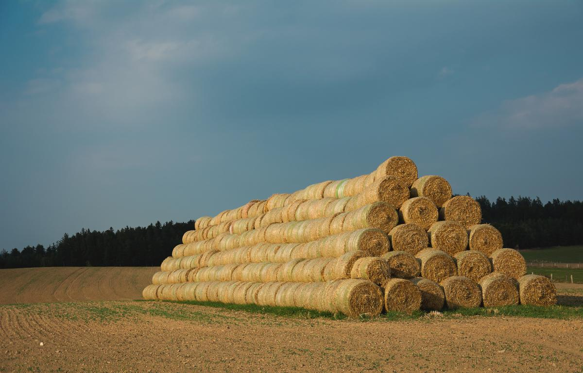 Stack Of Straw Bales - free stock photo #399340