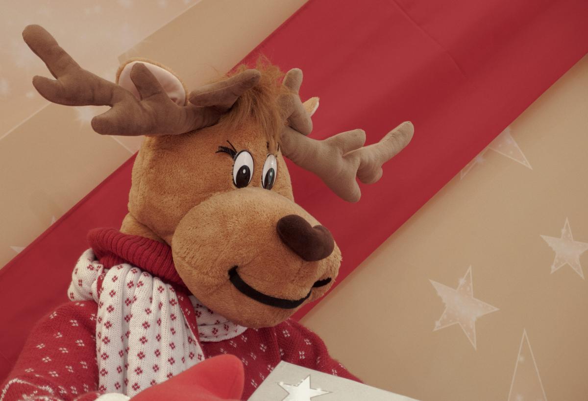 Plush Christmas Deer - free stock photo #400035