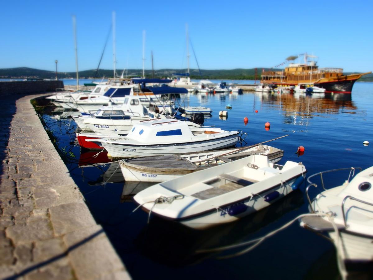 Boats in Harbor - free stock photo