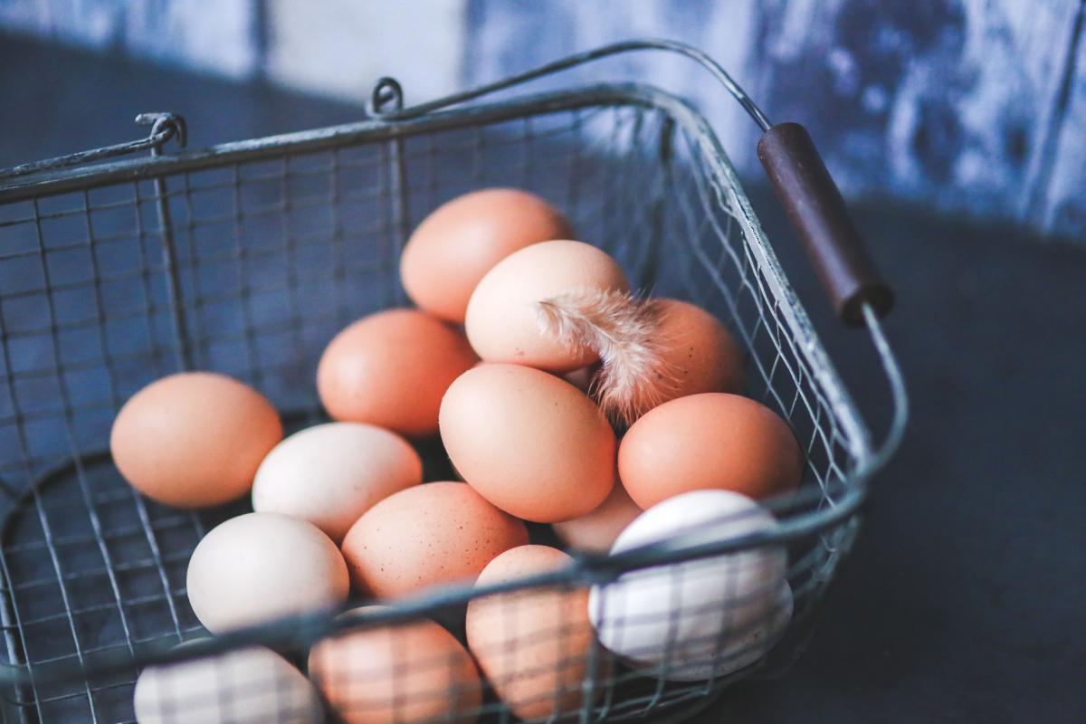 Eggs in Metal Basket Free Photo