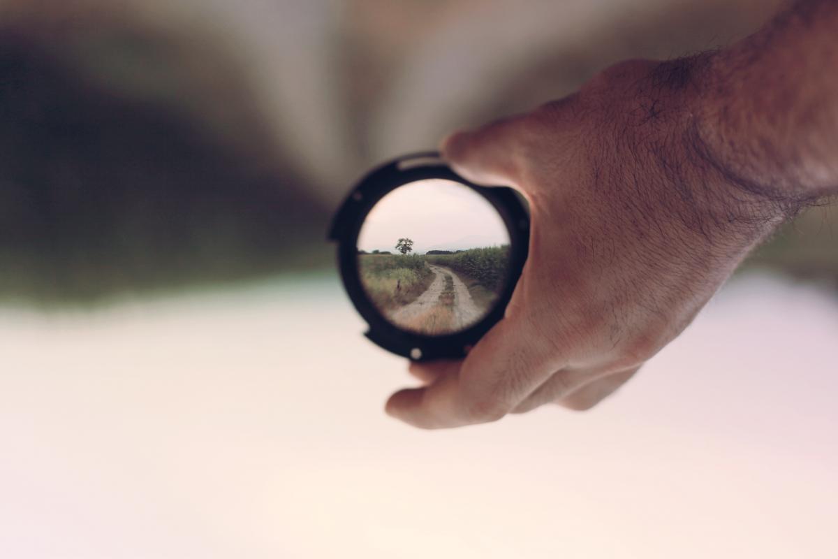 Focus #413209