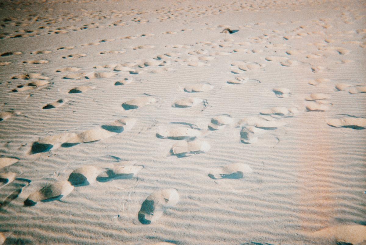 Sand Soil Earth