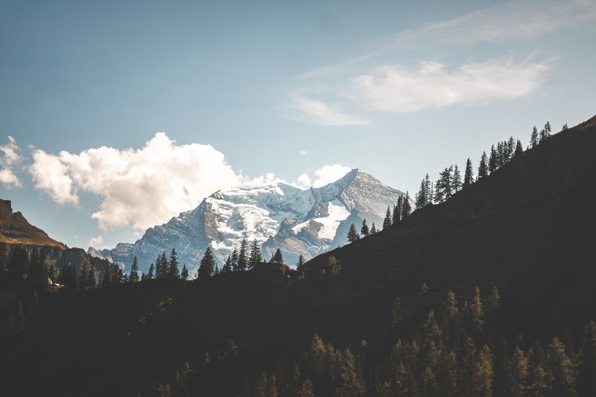 Range Mountain Alp #420067