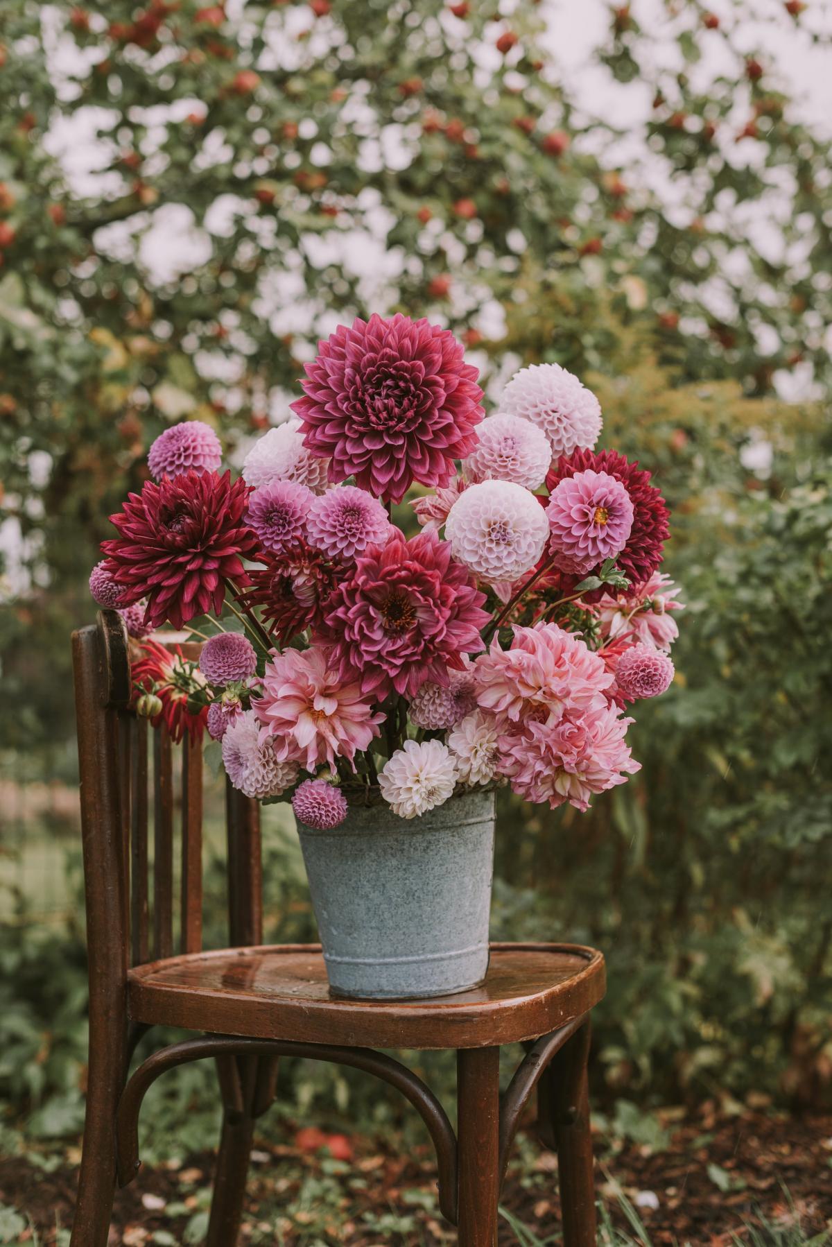 Pink Bouquet Flower