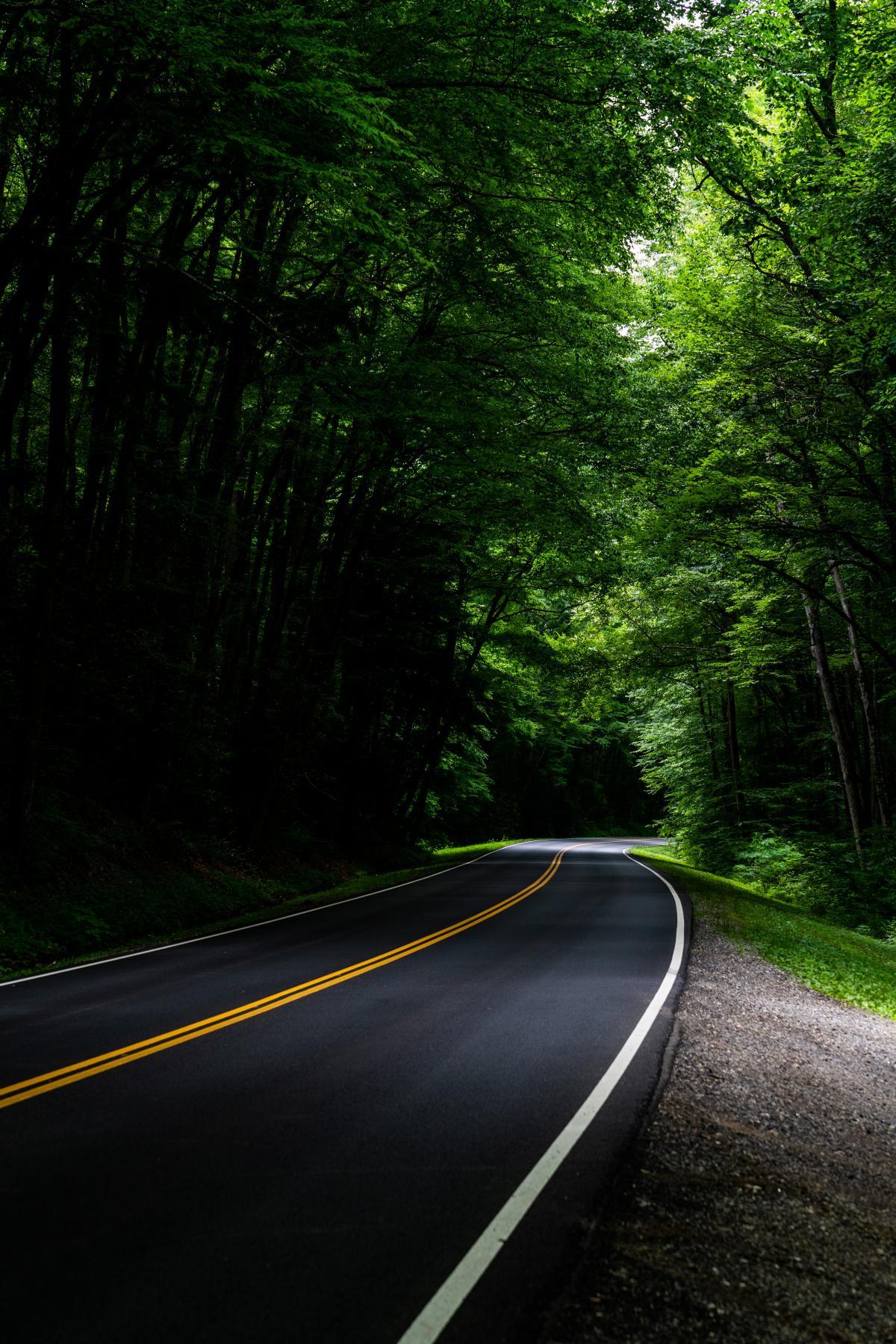 Road Bend Asphalt