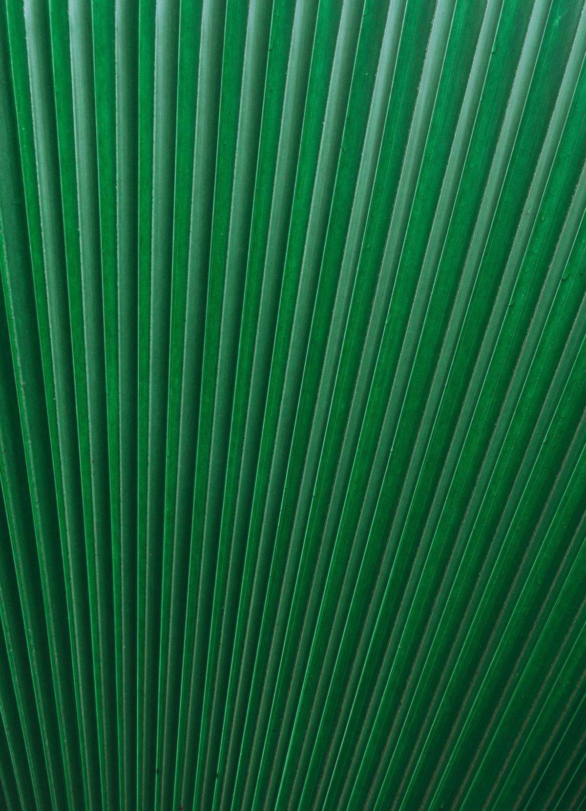 Texture Pattern Backdrop