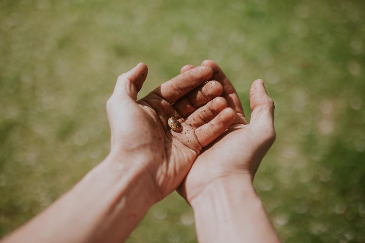 Hand Hands Finger #420829