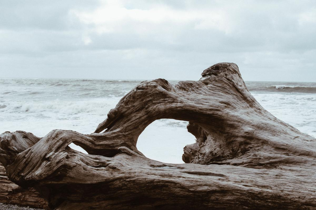 Sea Rock Ocean