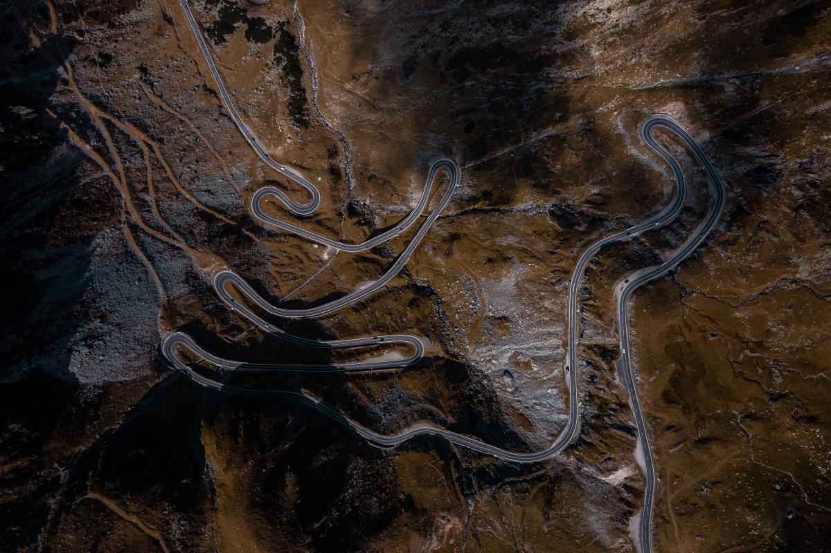 Garter snake Snake Thunder snake