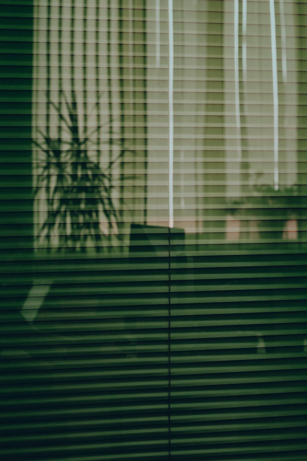 Window shade Window blind Blind