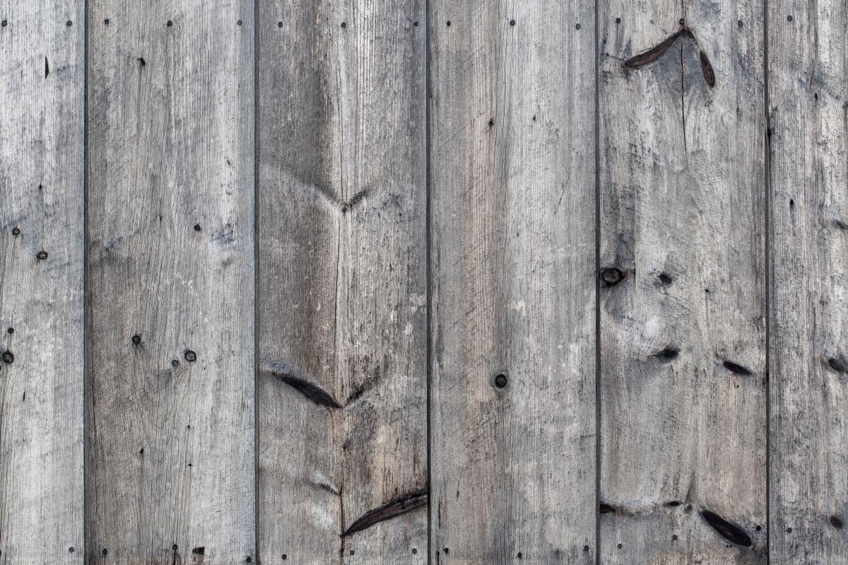Pine Wall Wood #422293