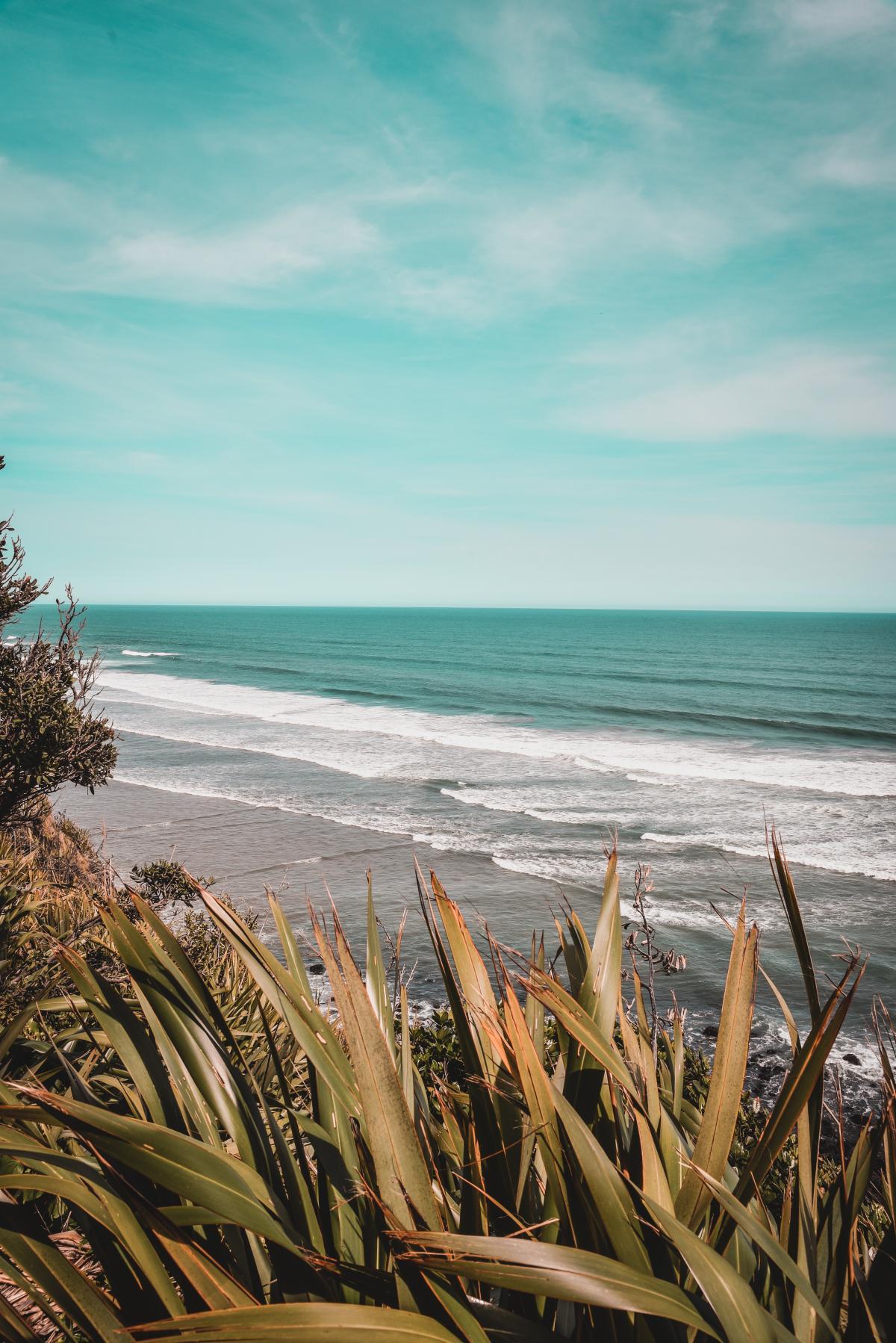 Beach Ocean Sea #422434