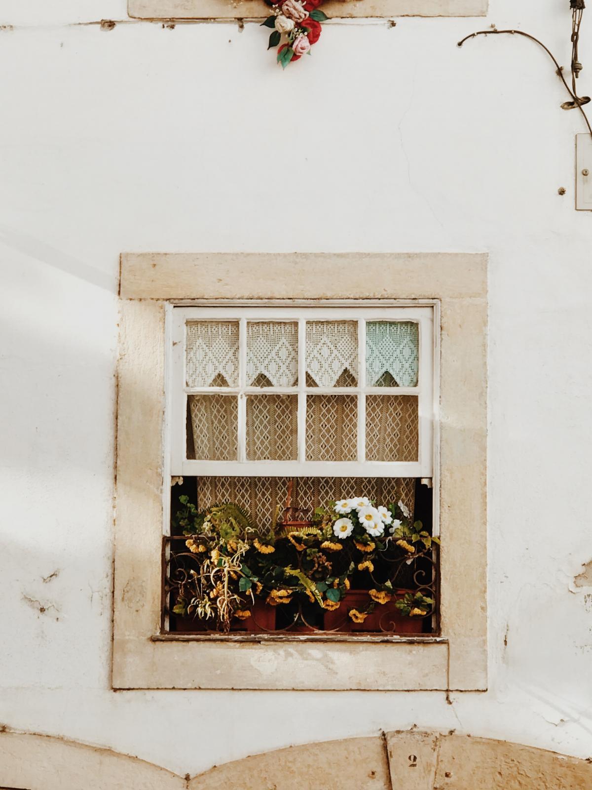 Window Wall Old #422750