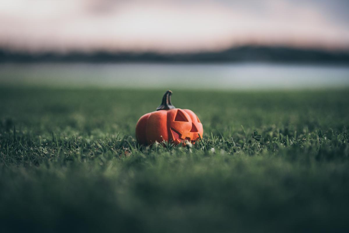 Pumpkin Vegetable Produce #423019
