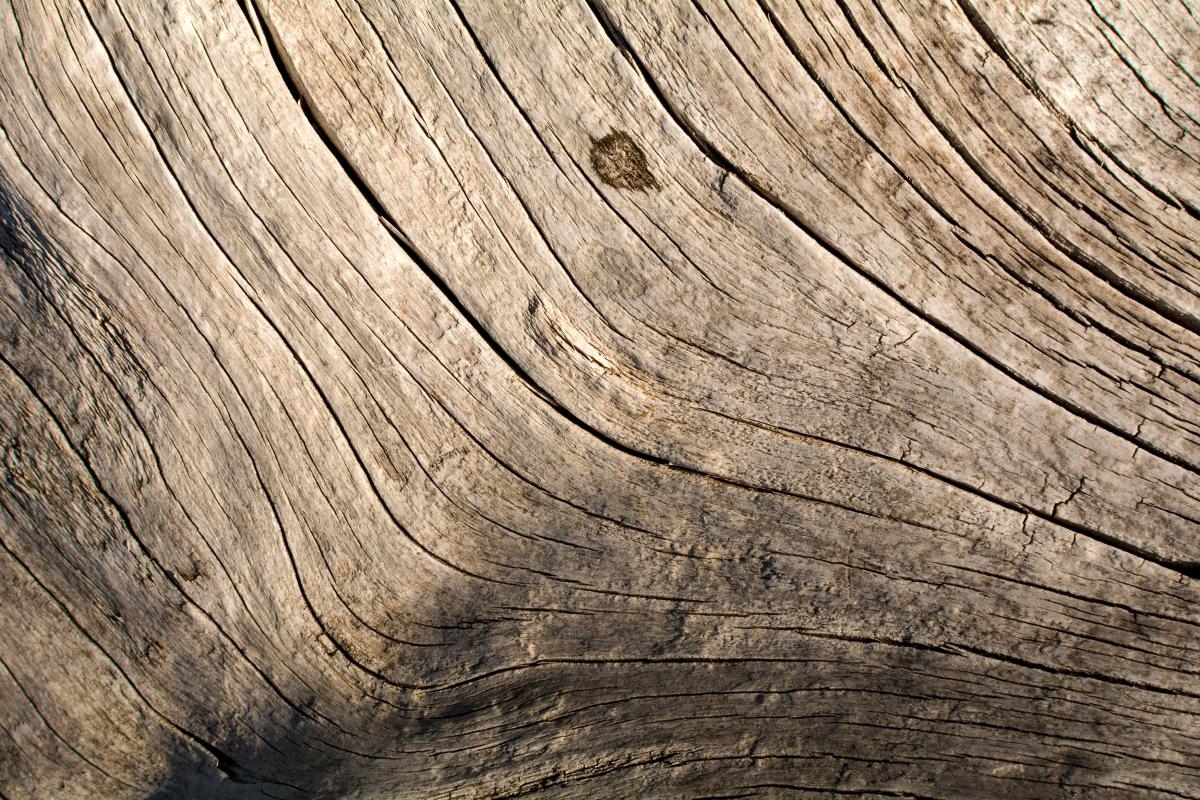 Wood Texture Lines - Free Image For Commercial Use #423140