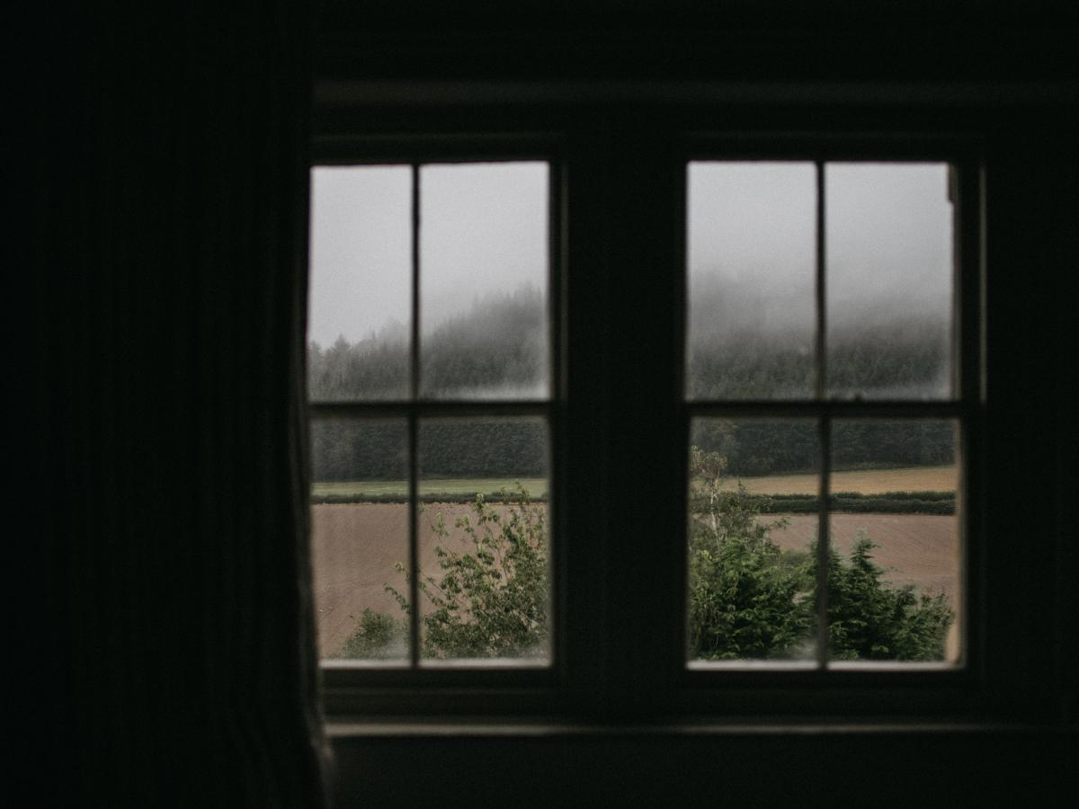 Window shade Door Window #423268