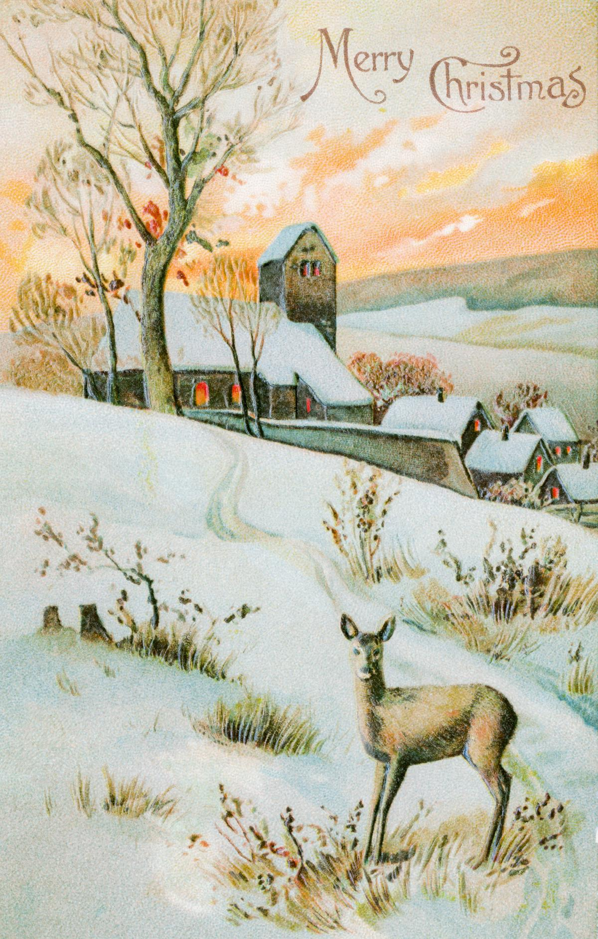 Christmas Card Depicting Winter Landscape and Deer (1910) by E. A. Schwerdtfeger & Co. Original from The New York Public Library.