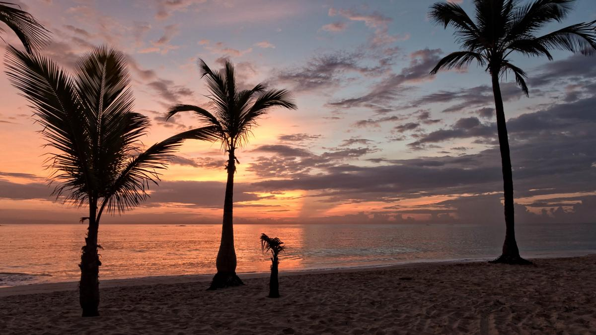 Tropical Beach Sunset Free Photo #423518