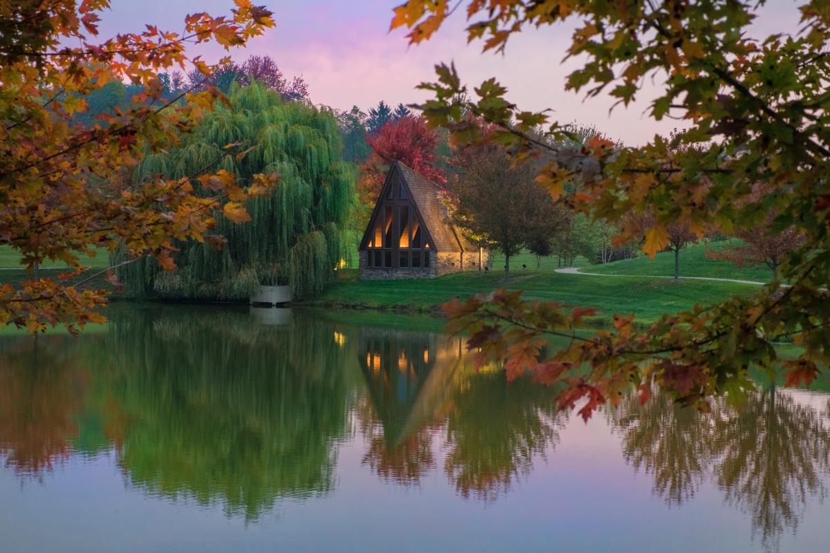 Tree Water Barn