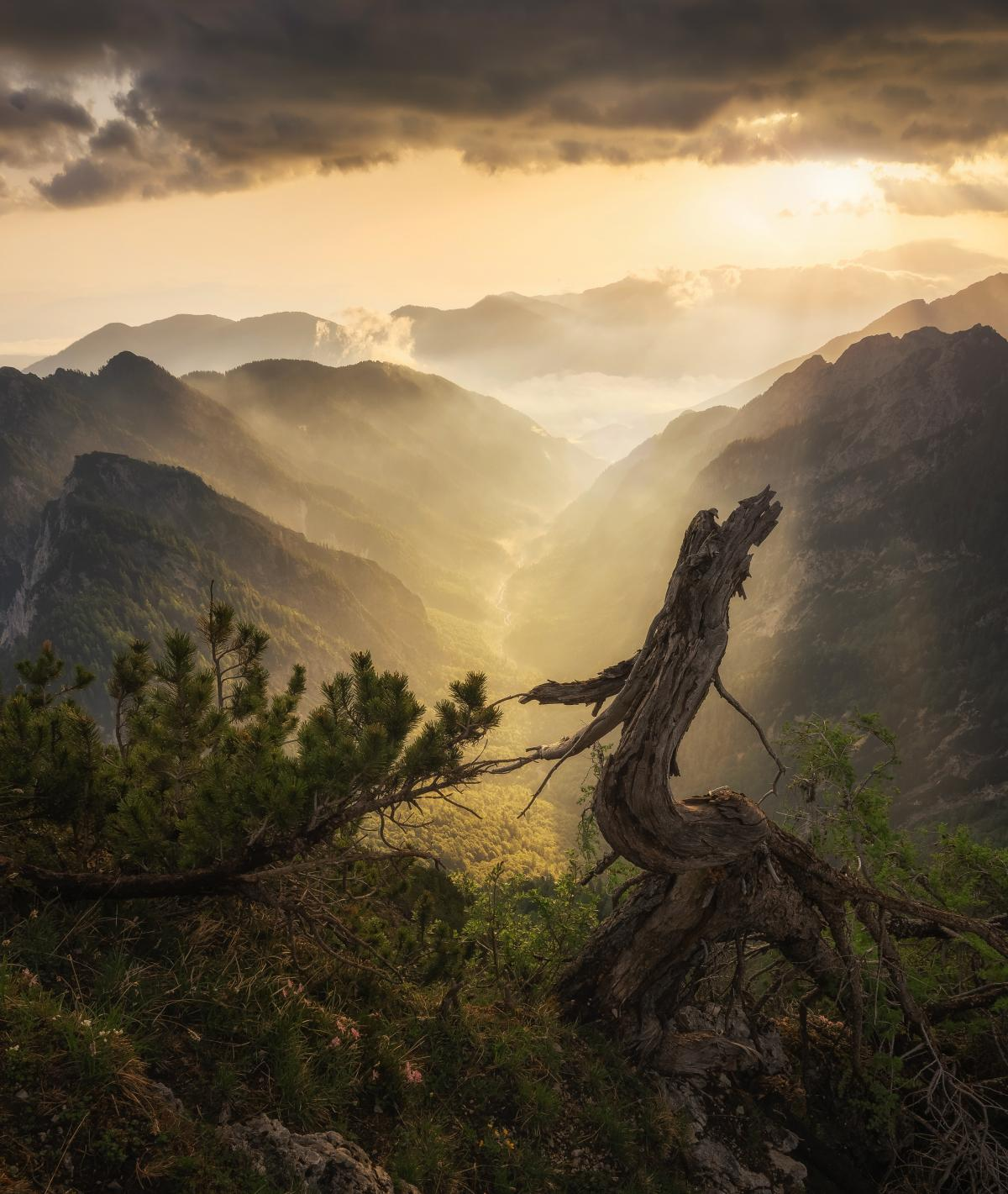 Mountain Range Landscape