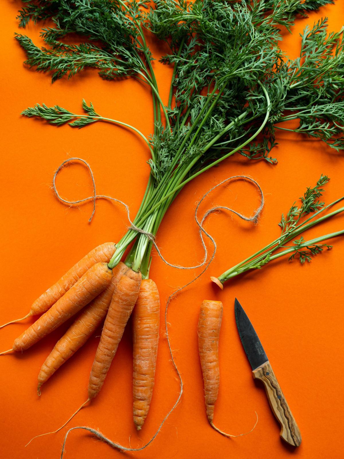 Carrot Root Food