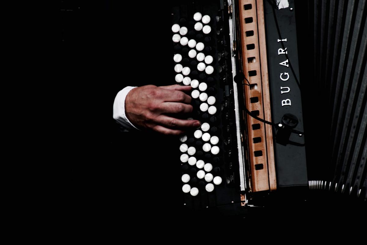 Musical instrument Accordion Keyboard instrument #425190